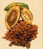Cacao en polvo bajo en calorías