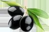 Olivas o aceitunas negras