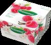 Yogur de soja Bio Frambuesa Vainilla Provamel