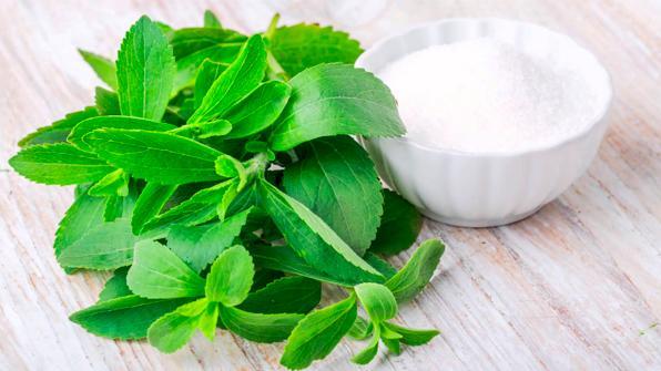 La Unión Europea, contra la stevia