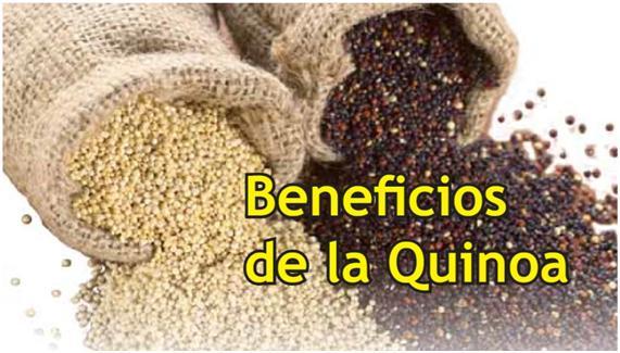 Beneficios de la quinoa, recetas y dónde comprarla