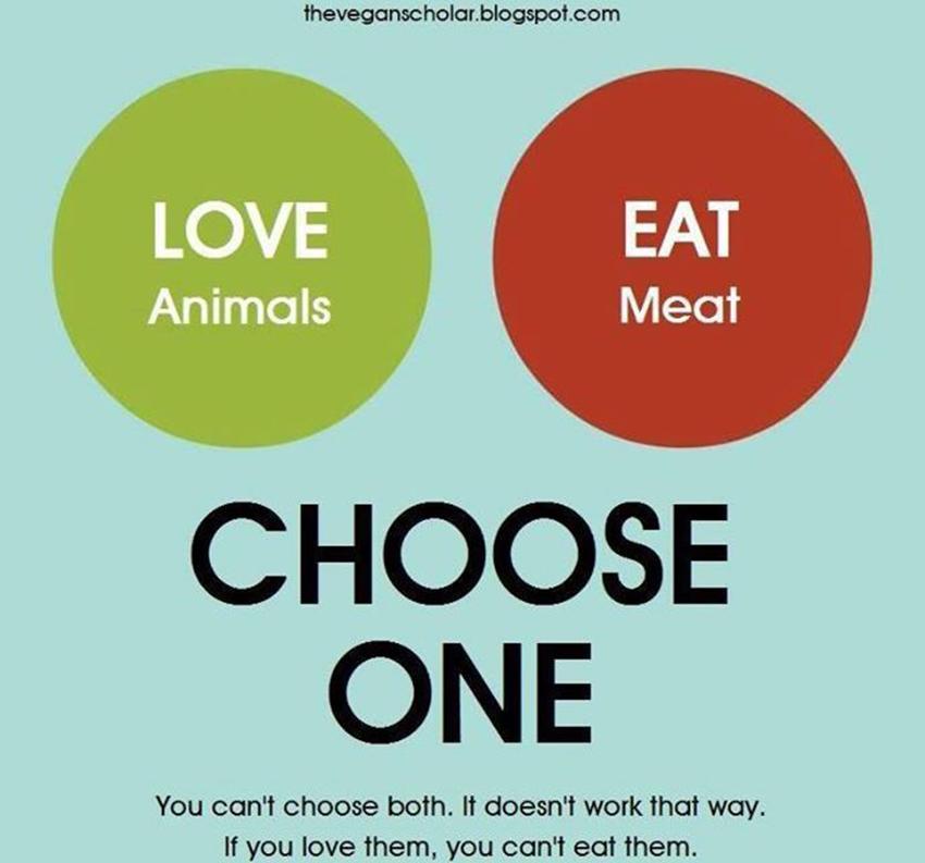 ¿Se puede amar a los animales y comerlos? Activista vegano lo explica