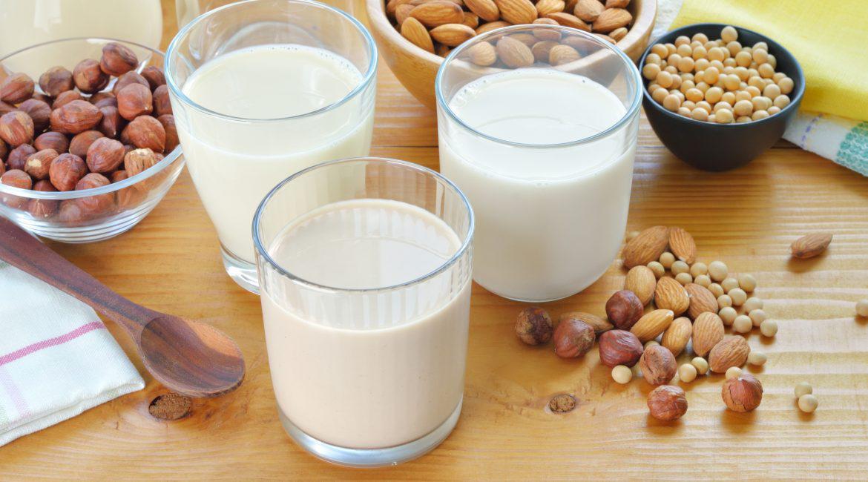 ¿Cuál es la mejor leche vegetal? Analizamos 10 tipos de leche
