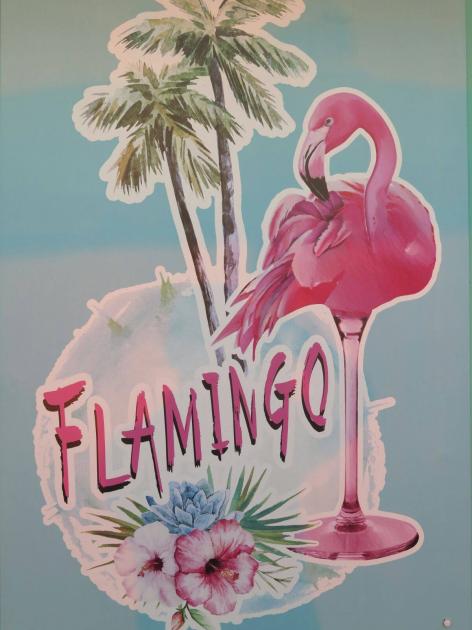 Bar Flamingo