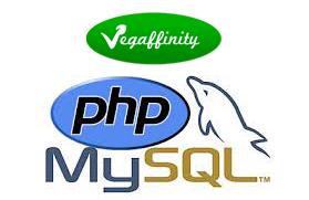 Oferta empleo en Vegaffinity como programador web